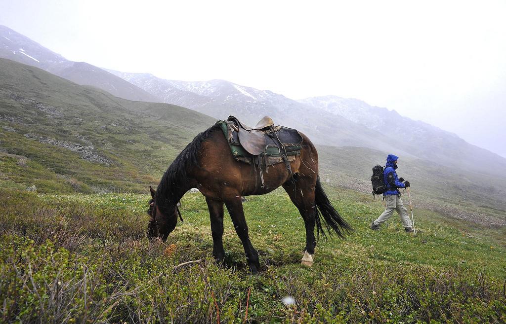 Белуха - жемчужина Сибири
