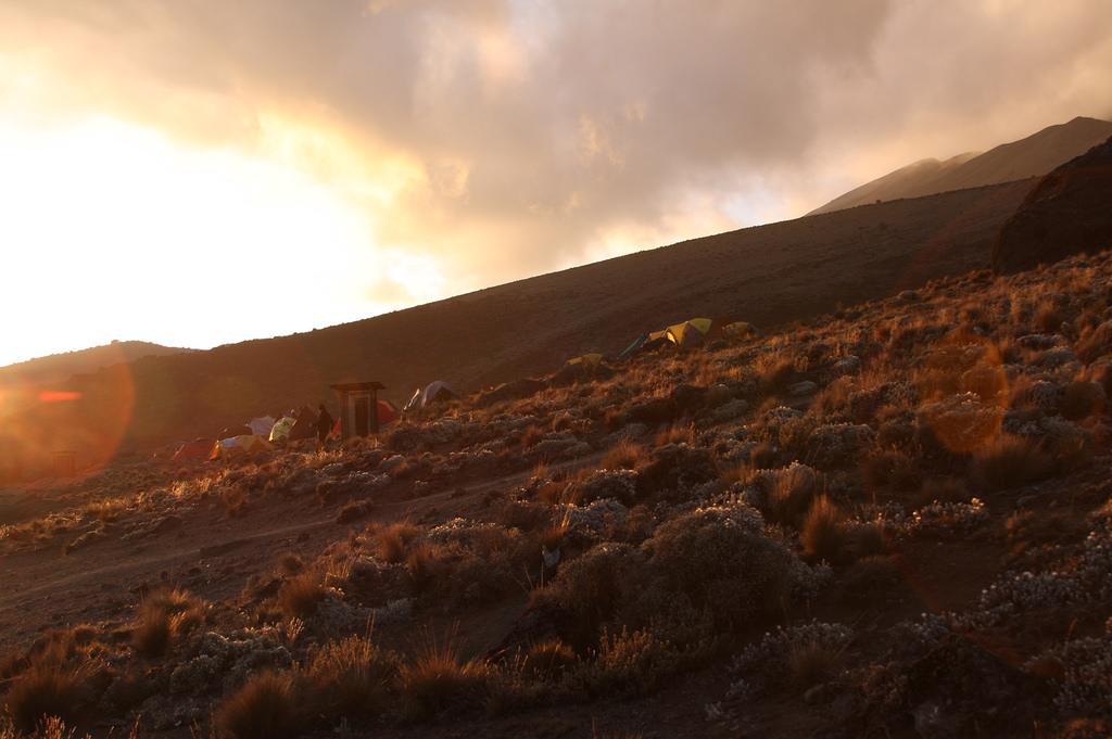 Приключенческий тур  Восхождение на Килиманджаро маршруту Мачаме kiliПриключенческий тур<br><br><br>Регион: Африка и острова Индийского океана<br>Страна: Танзания<br>Дата начала: 2018-05-31<br>Дата окончания: 2018-06-08<br>Количество человек: 1<br>С гидом: Нет